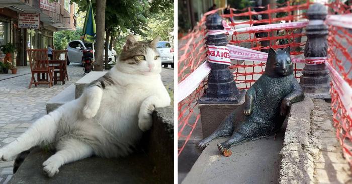 Томбили из Стамбула. / Фото: www.ictr.org